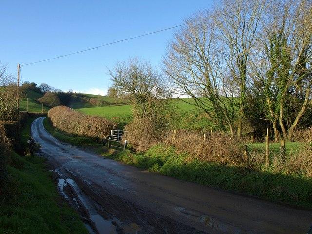 Lane near Hall's Farm