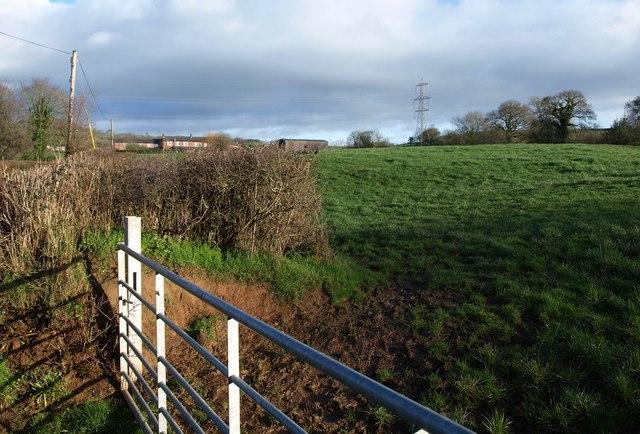 Towards Hall's Farm