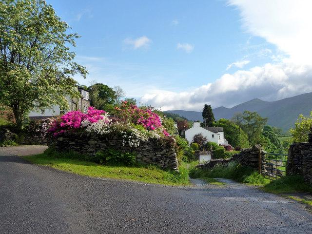 Floral Display, Troutbeck, Cumbria