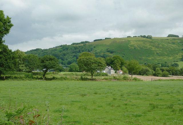 Pasture near Pont Gogoyan, Ceredigion