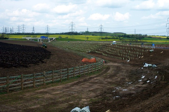 Tree planting on the new Motorway at Fairburn