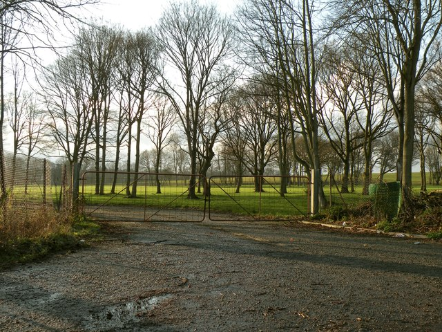 Part of Fornham Park
