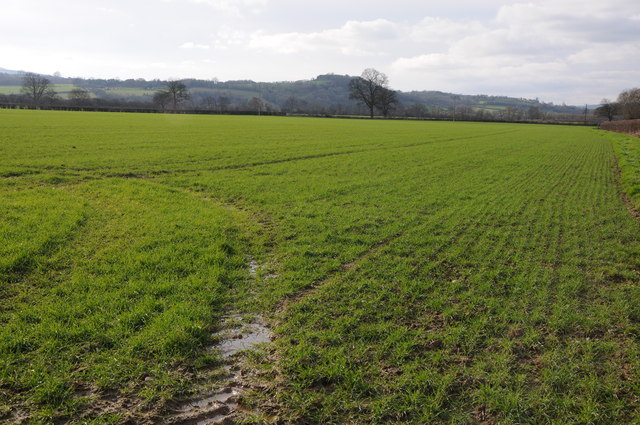 Arable land in the Wye valley