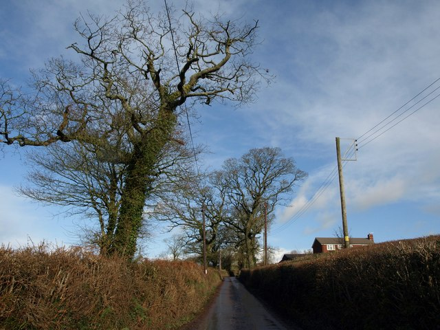 Lane past Summerhayes Farm
