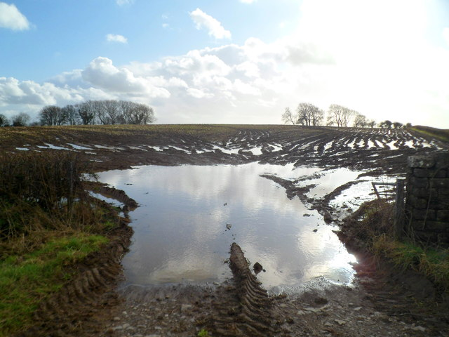 Waterlogged field on the south side of the A48 east of Cowbridge