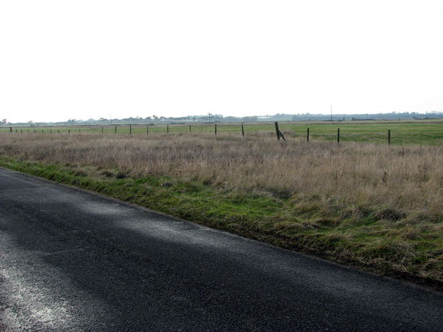 Marsh pastures by Shingle Street
