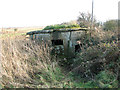 TM3643 : Dilapidated WWI pillbox, Shingle Street by Evelyn Simak
