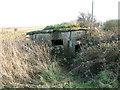 TM3643 : Dilapidated WWI pillbox, Shingle Street by Evelyn Simak
