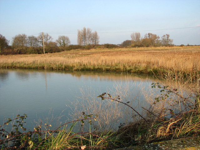 View across drainage channel by Hollesley pumping station