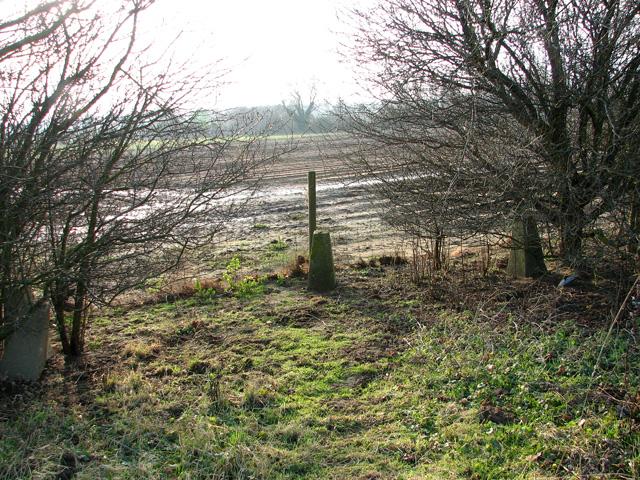 Field boundary near Hollesley