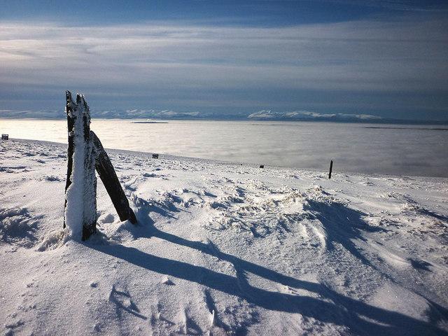 Old fenceposts, Little Knapside Hill