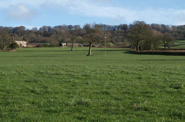 Field by Godford Cross