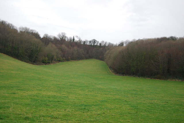 Countryside, Littlebredy