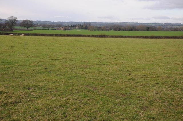 Farmland at Willersley