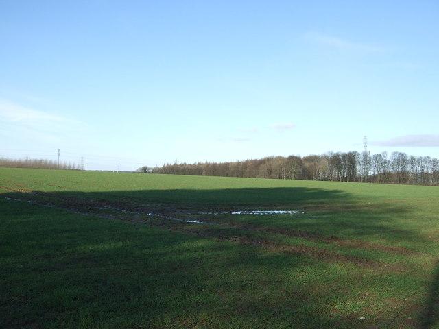 Farmland, Bramham Moor