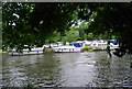 TQ7557 : Boats near Allington Marina by N Chadwick