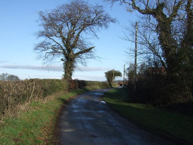 Warren Lane heading north
