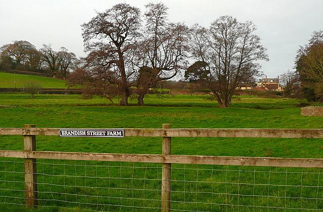 View from Brandish Street Farm
