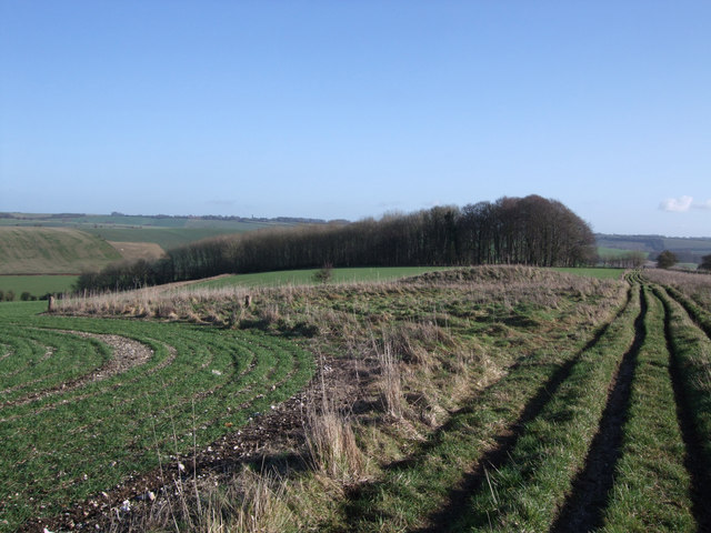 Round barrows west of the Giant's Grave, Aldbourne