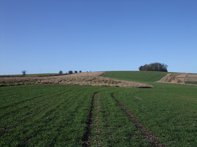 Two round barrows west of the Giant's Grave, Aldbourne