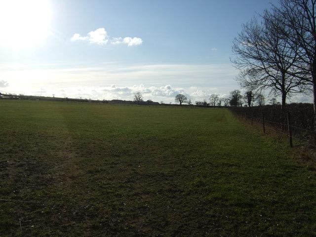 Farmland off Bramham Road