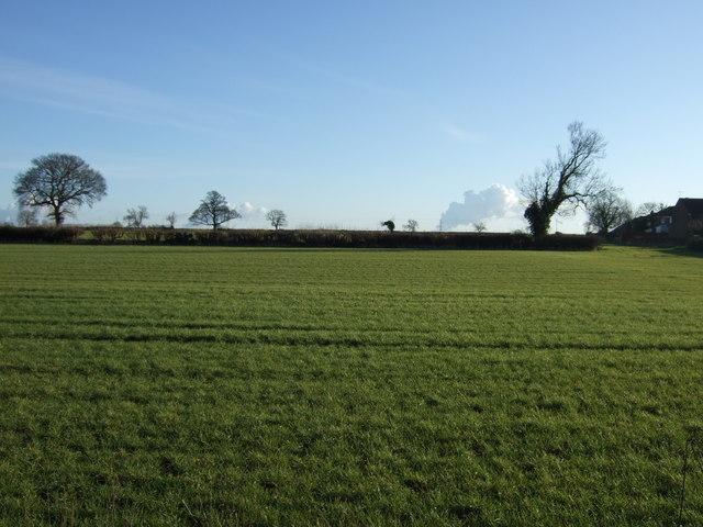 Farmland near Thorner