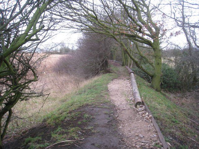 Footpath from the river bank