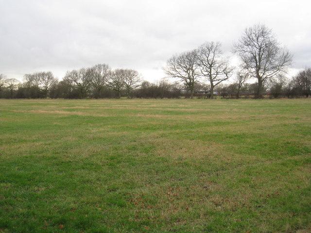 Field off Wood Lane