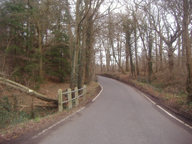 Partridge Lane