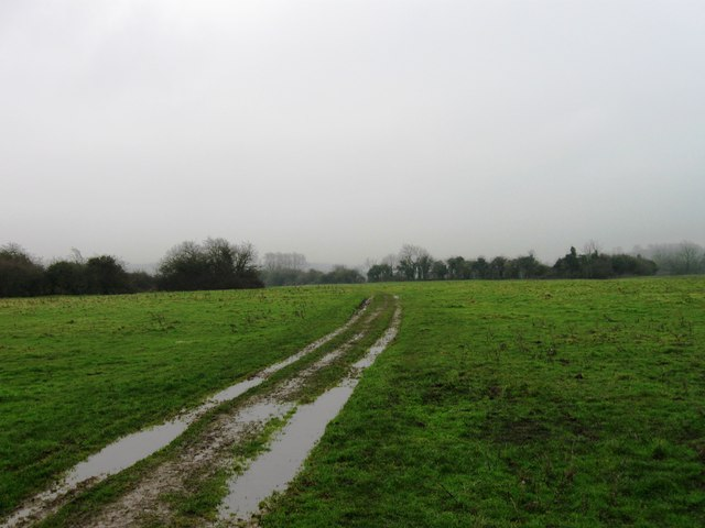 Kingrove Common