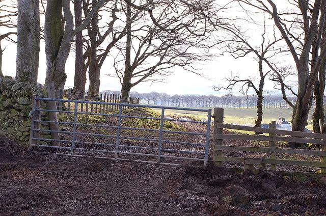 Muddy gateway, Boreland