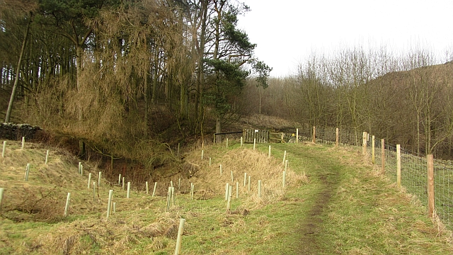 Path to Craigluscar Hill