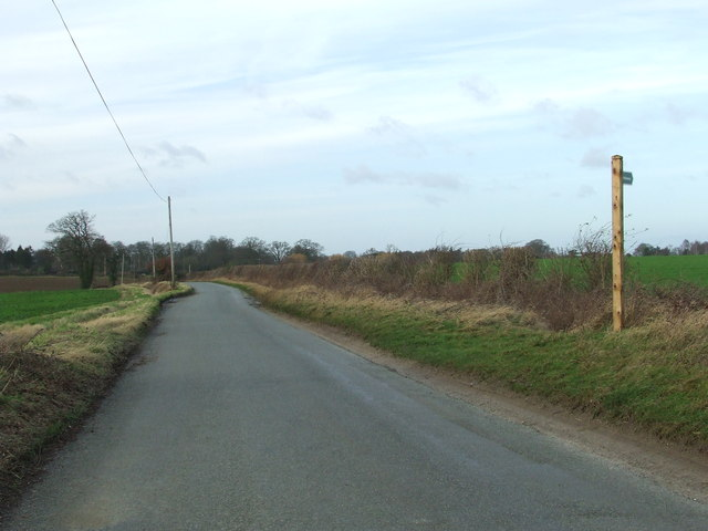 Bridlepath And Country Road