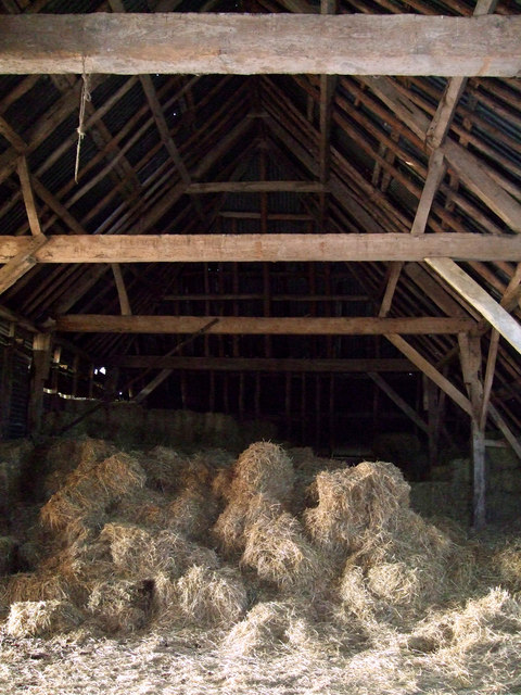 Timber roof, New Barn, near Aldbourne