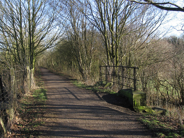 Teversal - underbridge on trail