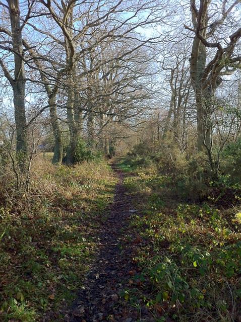 Aldershot Lane