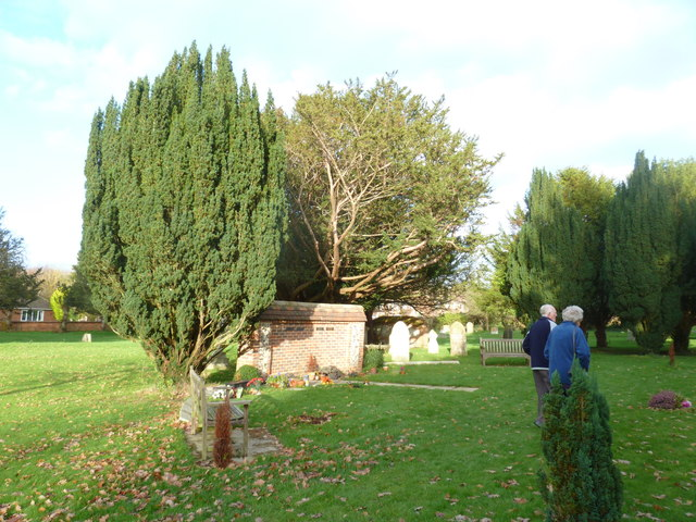 St Peter's at St Mary Bourne- churchyard visitors