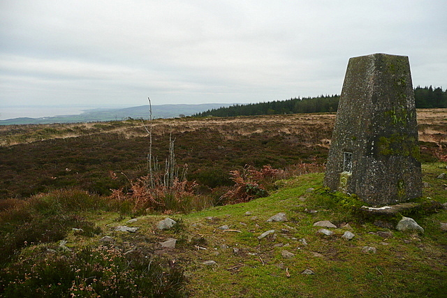 Trig point on Withycombe Common