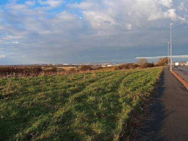 Grass Verge, A77, Whitletts, Ayr