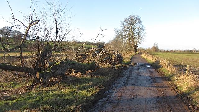 Farm access road, Upper Carbarns