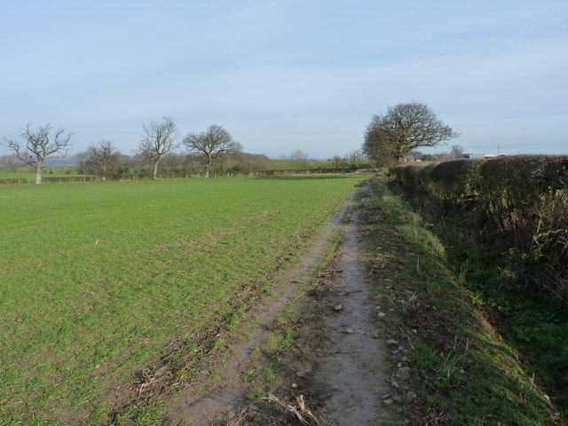 Along the footpath towards Bayston Hill