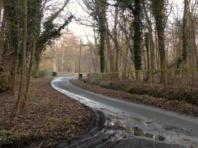 Mill Lane near Hengrave