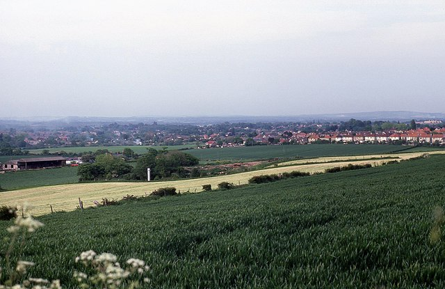 View of farmland from Widley Walk