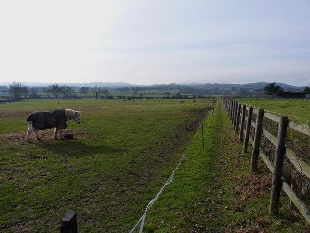 Footpath from Great Lyth
