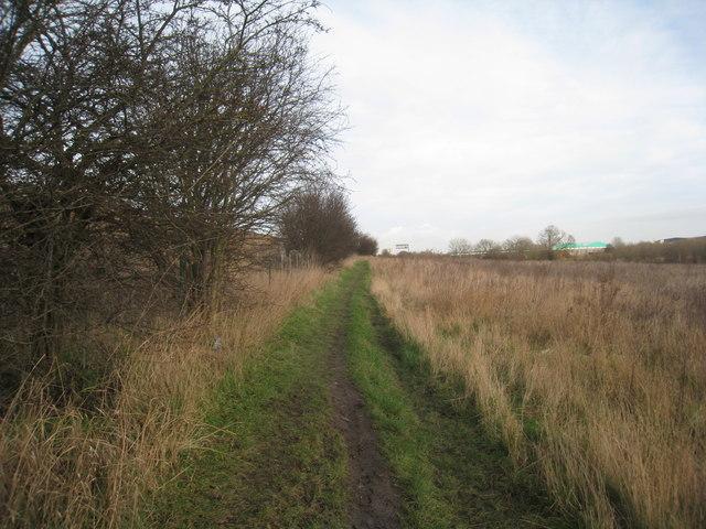 Alongside the motorway