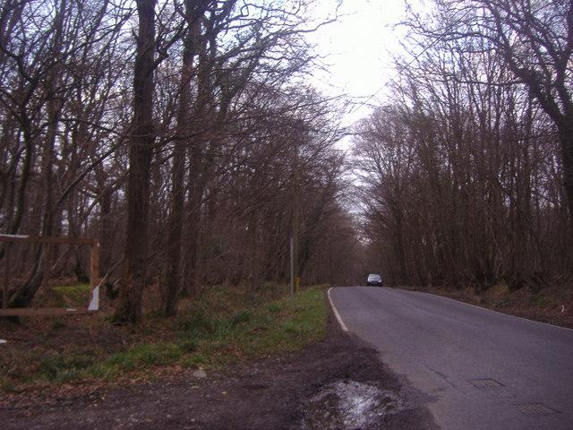 Rusper Road
