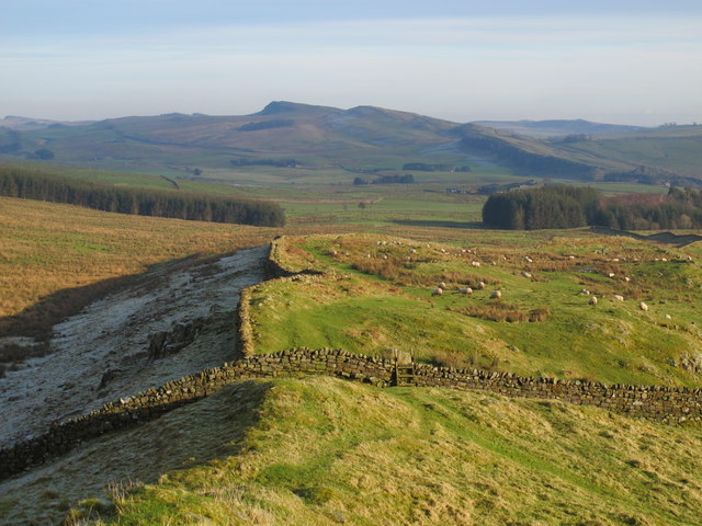(The course of) Hadrian's Wall west of Milecastle 44 (Allolee) (2)