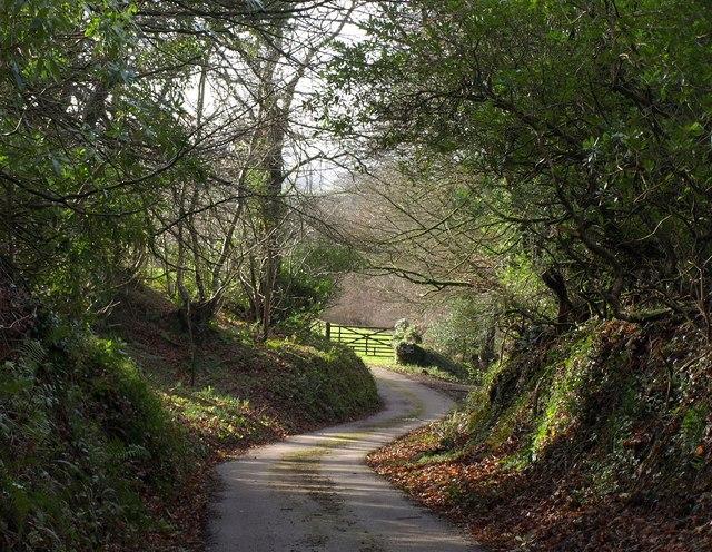 Dunkeswell Bridleway 19