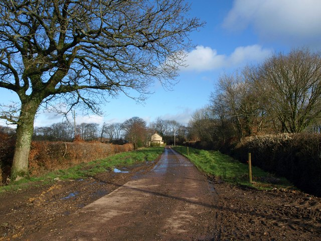 Track to Limers Lane