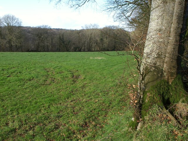 Pasture, Wolford Lodge